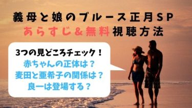 【無料見逃し】義母と娘のブルース正月SP無料視聴方法(ぎぼむす)